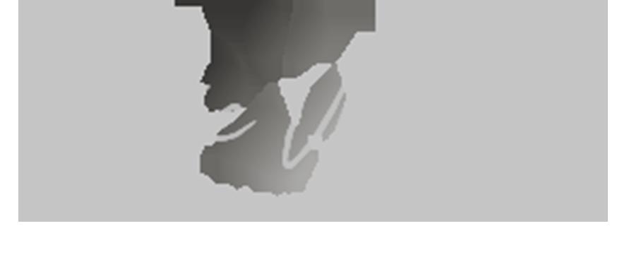 Photographe d'animaux de compagnie